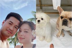 Lộ bằng chứng Phillip Nguyễn đưa Linh Rin và cún cưng về villa ở Vũng Tàu nghỉ dưỡng