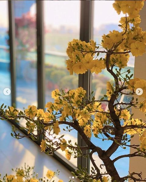 Cận cảnh từng góc tuyệt đẹp trong biệt thự của Hoa hậu Đặng Thu Thảo và ông xã thiếu gia-8