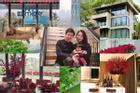 Cận cảnh từng góc tuyệt đẹp trong biệt thự của Hoa hậu Đặng Thu Thảo và ông xã thiếu gia