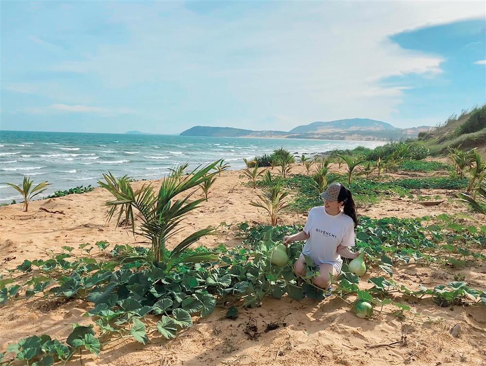 Bảo Thy khoe dự án đất biển ở Phan Thiết, dân mạng một lần nữa trầm trồ tài sản nhà đại gia-1