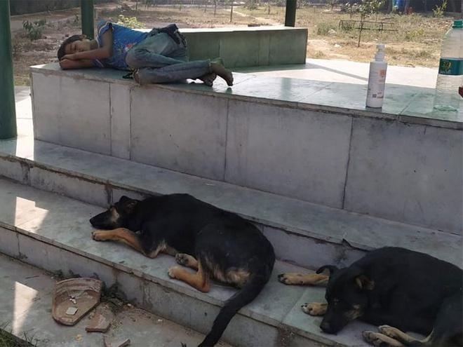 Cậu bé phải ngủ ở công viên mùa dịch đoàn tụ bố mẹ nhờ dân mạng-1