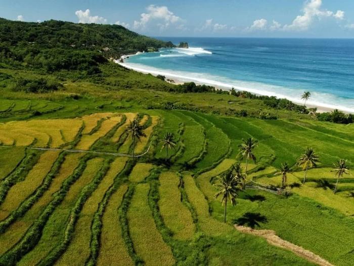 Lạc bước vào đảo thiên đường có thật tại khu nghỉ dưỡng số 1 thế giới-6
