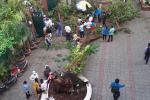 Thi thể học sinh lớp 6 tử nạn do phượng đổ ở TP.HCM được người thân đưa về nhà