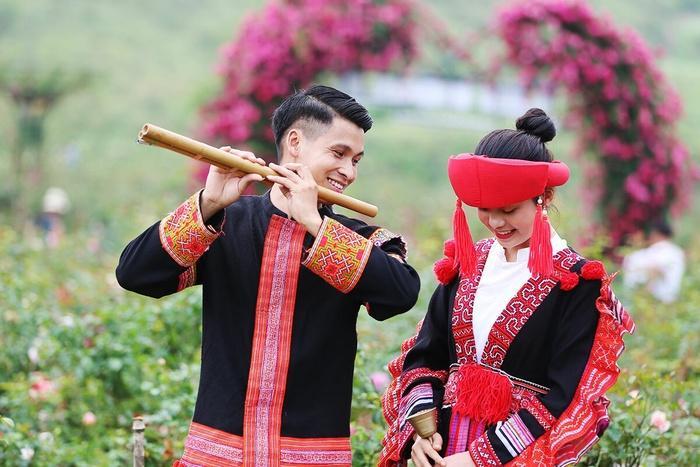 Lên Sapa ghé thăm thung lũng hoa hồng lớn nhất Việt Nam-5