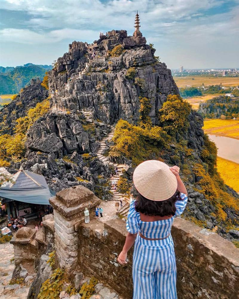 Mùa lúa vàng đẹp đến nao lòng ở Ninh Bình-1