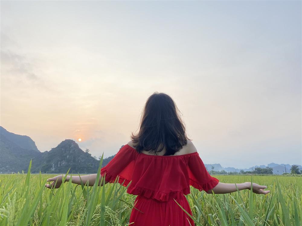 Mùa lúa vàng đẹp đến nao lòng ở Ninh Bình-2