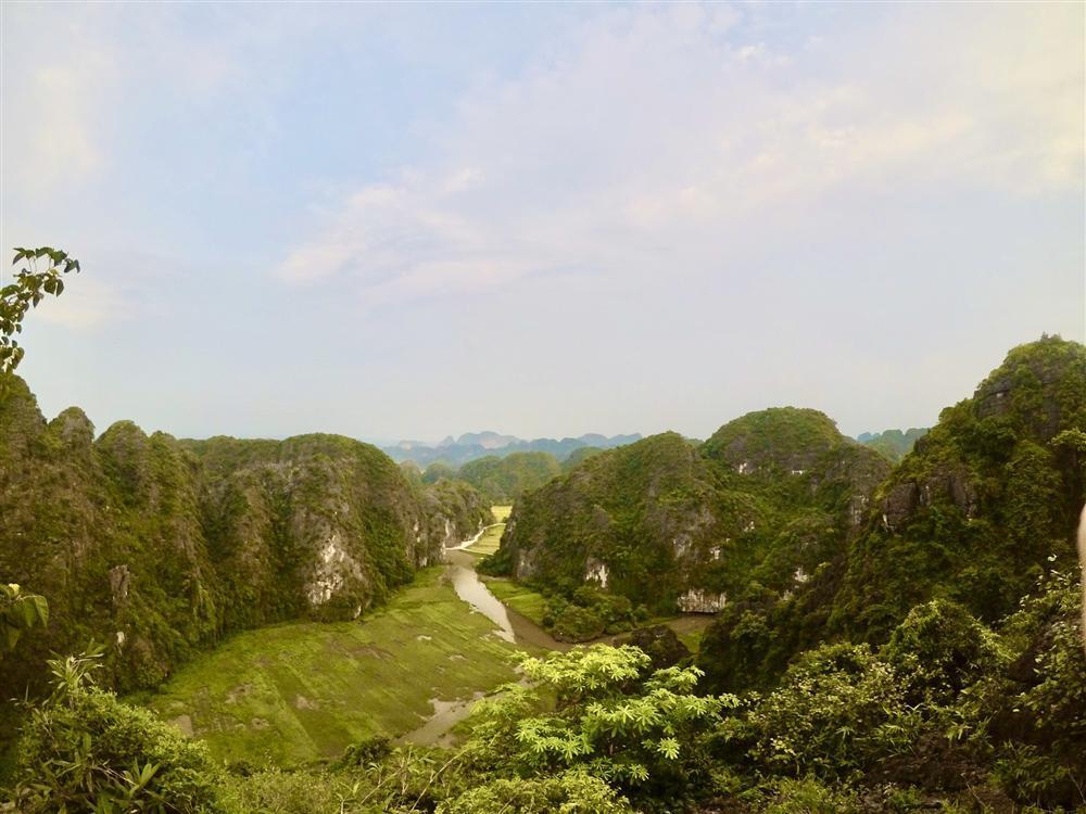 Mùa lúa vàng đẹp đến nao lòng ở Ninh Bình-5
