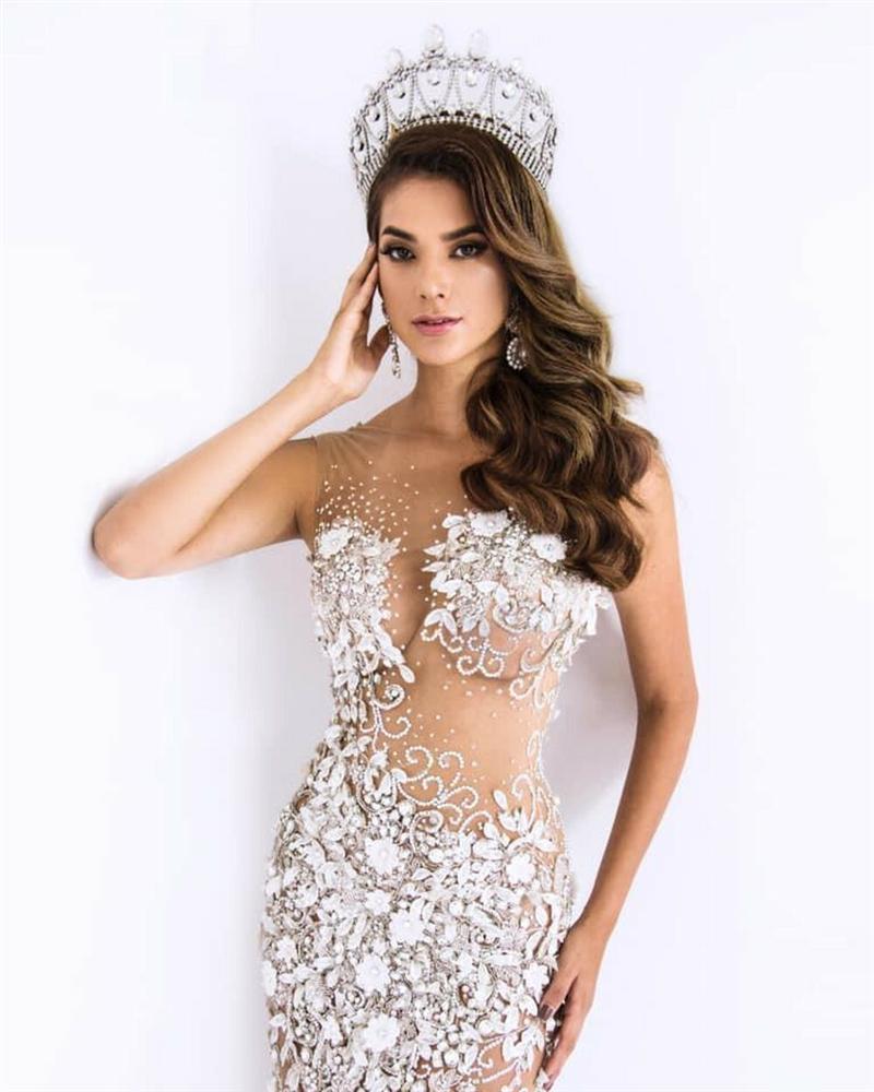 Hoa hậu Sinh thái Quốc tế mang thai trong nhiệm kỳ-1