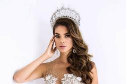 Hoa hậu Sinh thái Quốc tế mang thai trong nhiệm kỳ