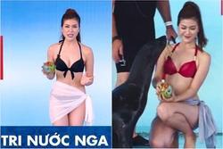 Từng gây sốt khi mặc phản cảm dẫn World Cup, Á khôi kiêm nữ MC nhà đài nổi tiếng giờ ra sao?