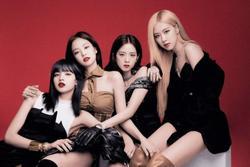 Lộ thông tin ngày BlackPink comeback, fan mỉa mai: 'Có teaser mới tin'