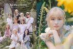 Twice chính thức comeback với 'More & More': Nhạc ổn, MV ảo diệu nhưng sai nhất lại chính là… Momo