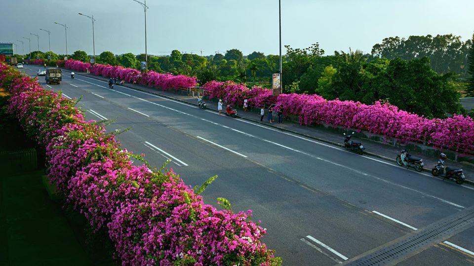 Bạn gái cũ Quang Hải tạo dáng xinh đẹp trên con đường hoa giấy nổi khắp mạng xã hội-2