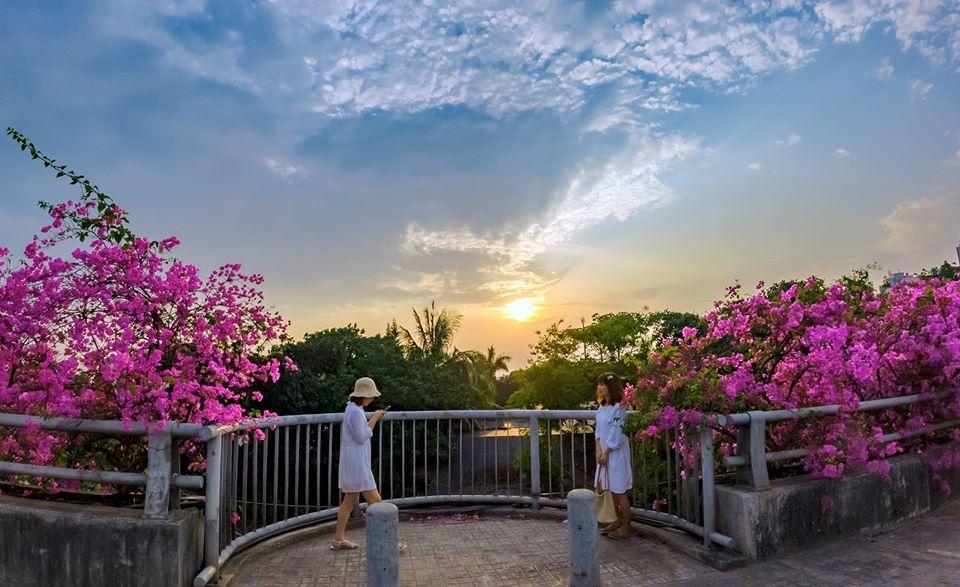 Bạn gái cũ Quang Hải tạo dáng xinh đẹp trên con đường hoa giấy nổi khắp mạng xã hội-4