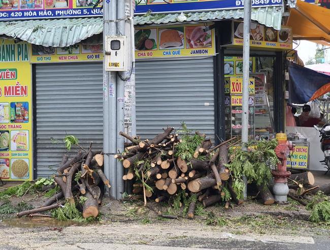 Mưa lớn kèm gió mạnh khiến phượng lại bật gốc, 3 nữ sinh ở Đồng Nai bị đè xây xát-4