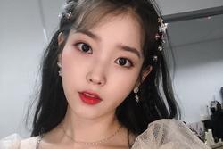 Danh tiếng mỹ nhân Hàn hot nhất Trung Quốc tháng 5: IU, BACKPINK đánh bại Song Hye Kyo