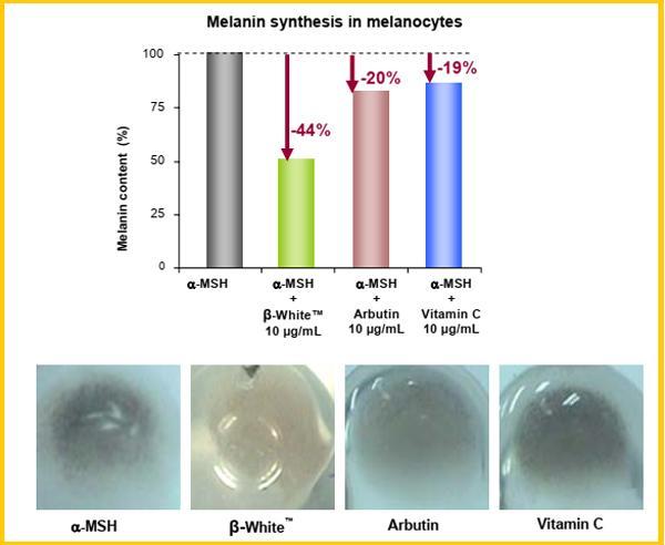 Cải thiện nám da với công nghệ β-White hướng đích dạng liposome-1