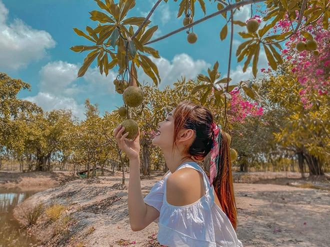 Nhà vườn rộng rãi tràn ngập cây trái của sao Việt-7