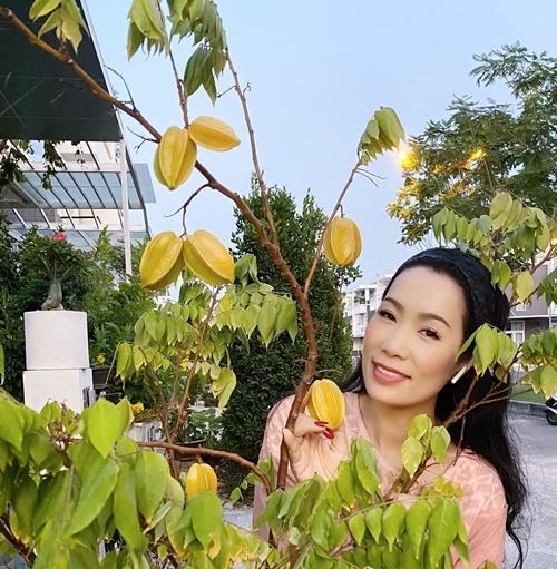 Nhà vườn rộng rãi tràn ngập cây trái của sao Việt-12
