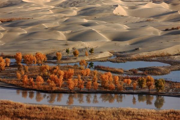 Ngất ngây con đường rừng xanh lá đỏ trên nền cát trắng đẹp như tranh-8