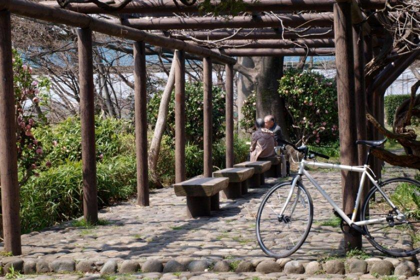 Nghe chuyên gia du lịch chia sẻ 5 NÊN chuẩn không cần chỉnh khi du lịch Nhật Bản-2