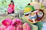Tìm về phong vị thanh tao của đất Hà Thành qua cách làm và ướp trà sen Tây Hồ
