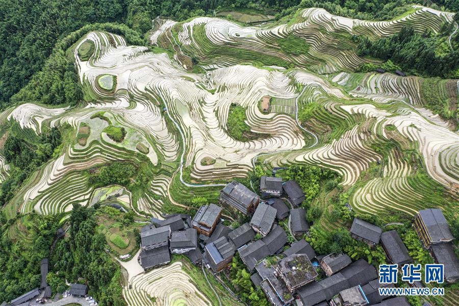 Mê đắm trước vẻ đẹp của những thửa ruộng bậc thang mùa hè tại miền sơn cước Trung Hoa-1