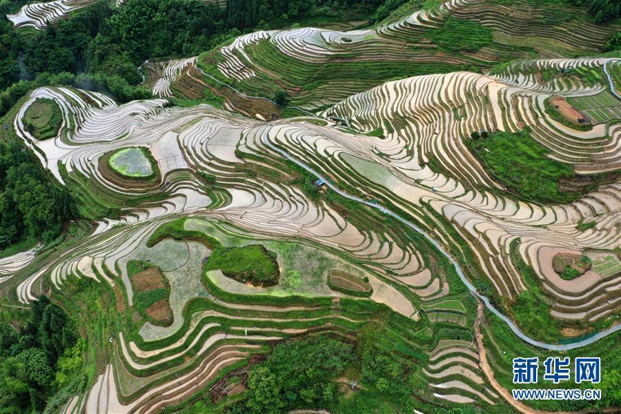 Mê đắm trước vẻ đẹp của những thửa ruộng bậc thang mùa hè tại miền sơn cước Trung Hoa-2