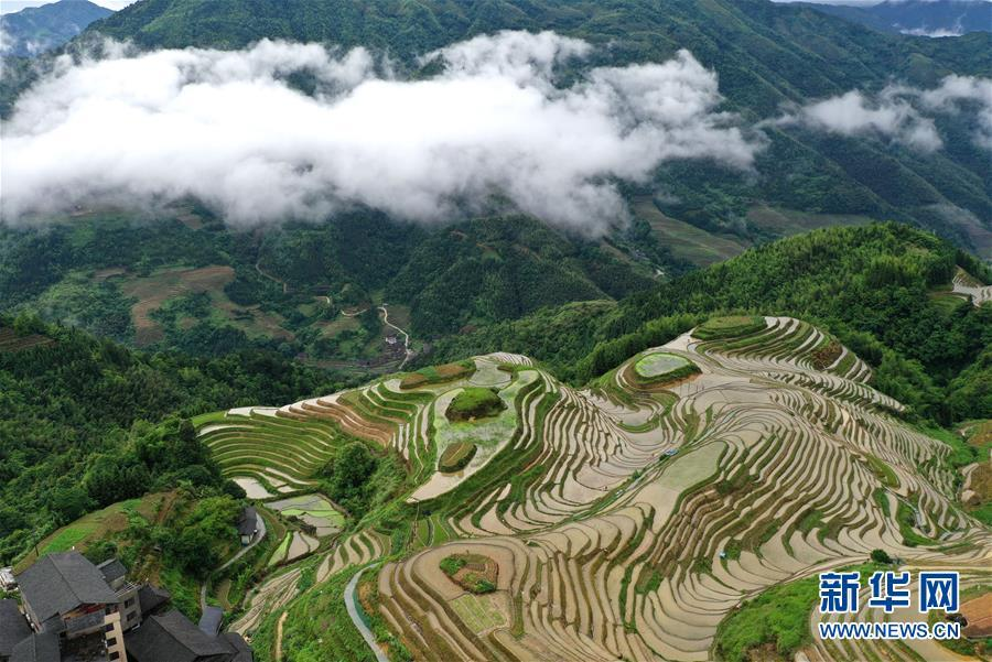 Mê đắm trước vẻ đẹp của những thửa ruộng bậc thang mùa hè tại miền sơn cước Trung Hoa-4