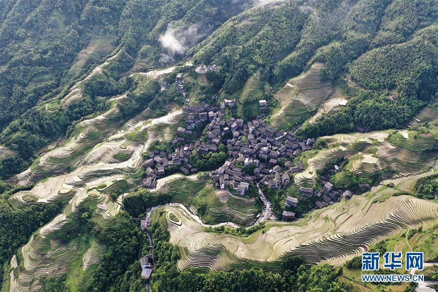 Mê đắm trước vẻ đẹp của những thửa ruộng bậc thang mùa hè tại miền sơn cước Trung Hoa-6