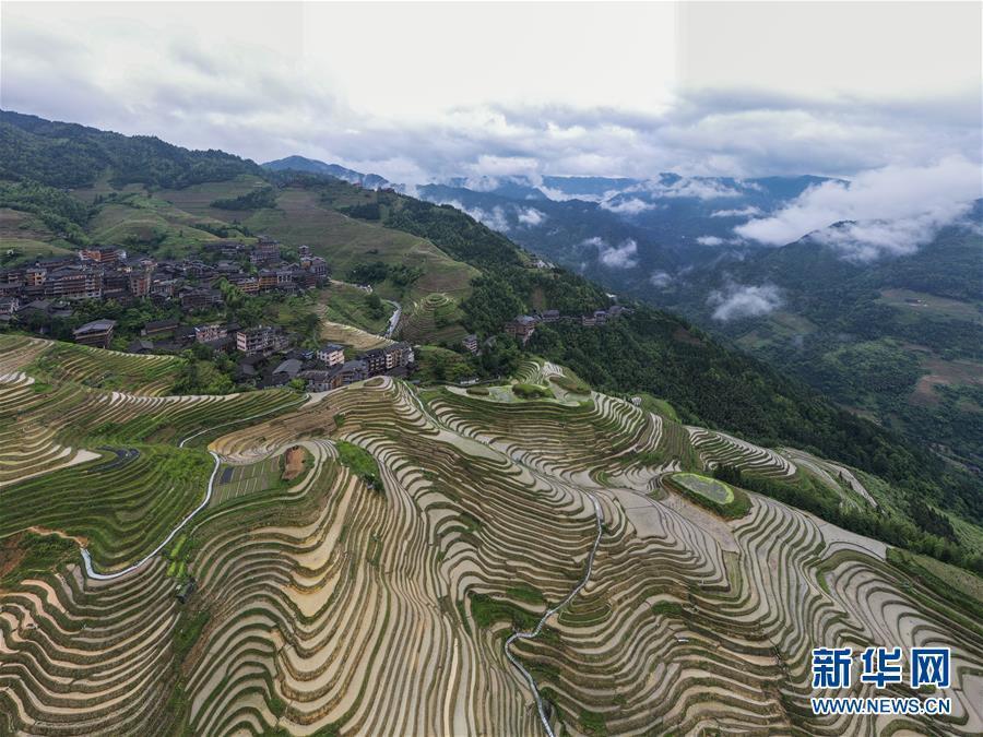Mê đắm trước vẻ đẹp của những thửa ruộng bậc thang mùa hè tại miền sơn cước Trung Hoa-3