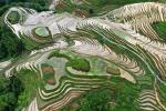 Mê đắm trước vẻ đẹp của những thửa ruộng bậc thang mùa hè tại miền sơn cước Trung Hoa