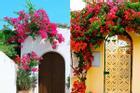 Ngẩn ngơ ngắm những ngôi nhà có giàn hoa tím đẹp mộng mơ