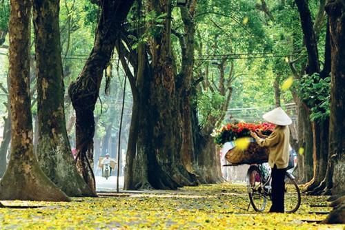 Cảm xúc ùa về với 15 con đường đặc sản Hà Nội, đi xa mấy cũng nhớ nao lòng-1