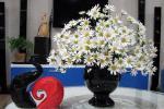 7 loại hoa đẹp hợp để phòng khách, không sớm thì muộn cũng giàu sang