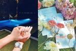 Phanh Lee khoe thiệp mời kịp deadline lấy chồng năm 30 tuổi, bạn bè chuẩn bị 'lên đồ' đi ăn cỗ cưới thôi nào