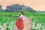 Đầm sen khoe sắc ở Ninh Bình khiến dân tình nhốn nháo đến 'check-in'
