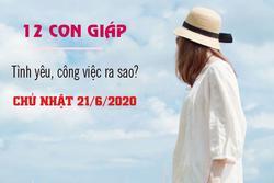 Tử vi Chủ nhật ngày 21/6/2020 của 12 con giáp: Tý thuận lợi tình cảm, Sửu cần tiết chế lời nói
