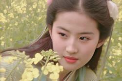 Loạt ảnh 'đẹp hơn hoa' chưa từng được công bố của Lưu Diệc Phi