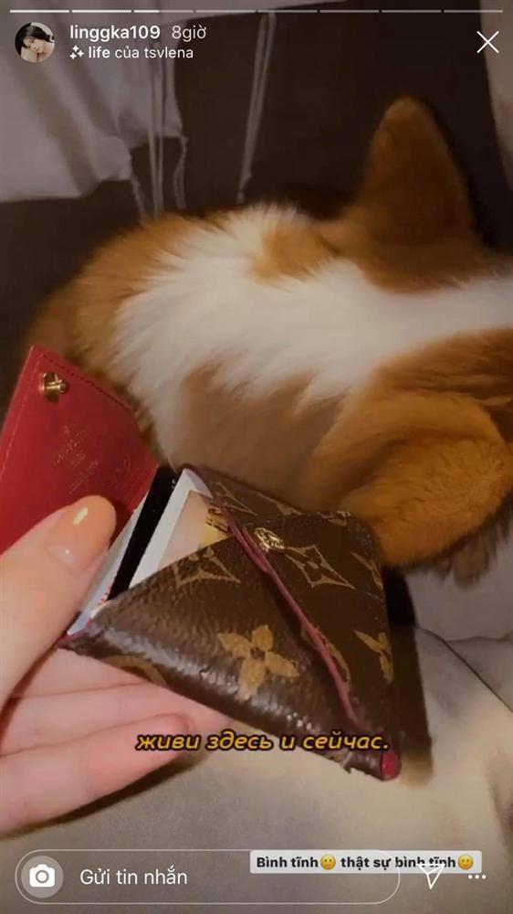Linh Ka mắng xối xả thủ phạm phá hoại chiếc ví hàng hiệu-2