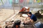 Phan Mạnh Quỳnh vào bếp đun nước, làm gà nhoay nhoáy, rể thế này bố mẹ vợ nào chẳng ưng!