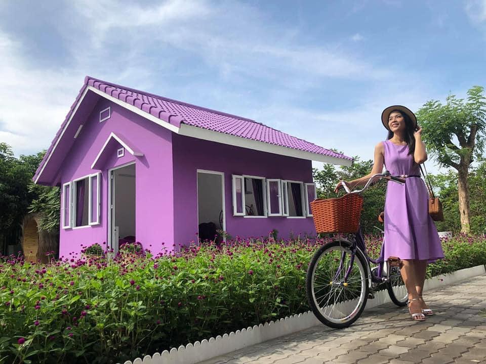 Dân mạng lùng sục căn nhà màu tím mộng mơ ở Cần Thơ-6