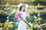 Học cách cắm hoa sen khiến 'vạn người mê' của nữ giáo viên Hà thành