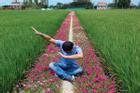 Con đường Hoa Mười Giờ 'tím lịm tìm sim' giới trẻ thích mê ở Tiền Giang