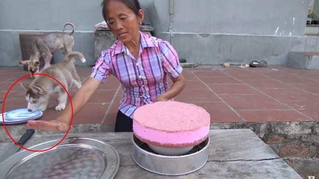 Mải mê làm bánh, bà Tân Vlog để chó liếm đĩa rồi mang ra đựng thức ăn mời các cháu-1