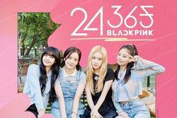 YG Entertainment 'nhổ neo', công bố phát sóng show thực tế nóng rực của Black Pink