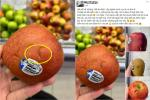Khách bấm trái cây đến 'bầm dập' ở siêu thị nhưng không mua khiến ai nấy bức xúc