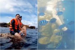 Phạm Quỳnh Anh - Quang Vinh dẫm đạp lên san hô khi lặn biển