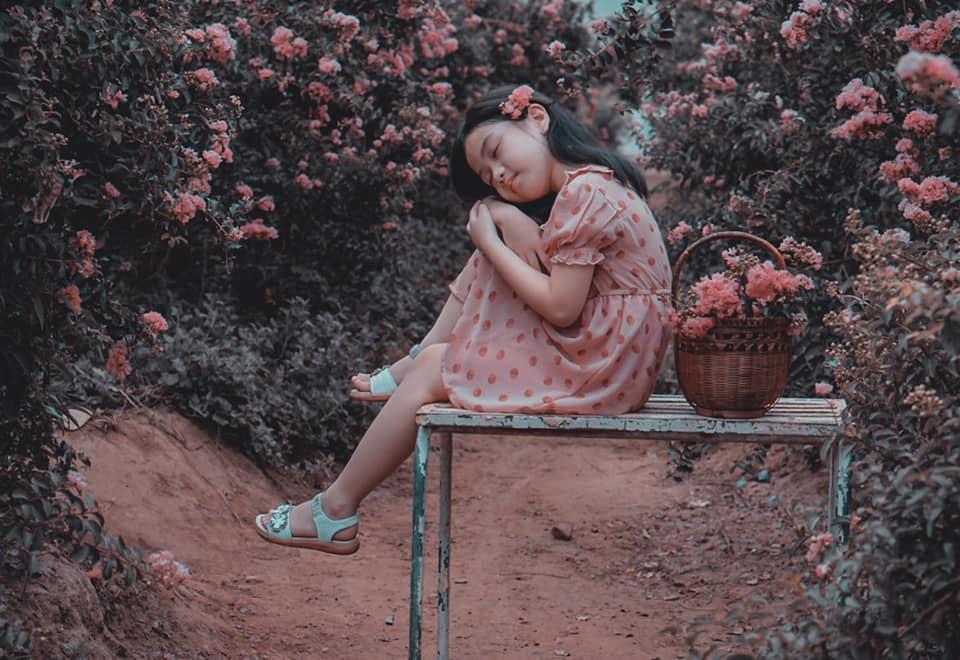 Giới trẻ xao xuyến trước con đường hoa tường vi lãng mạn như ngôn tình giữa lòng Hà Nội-10