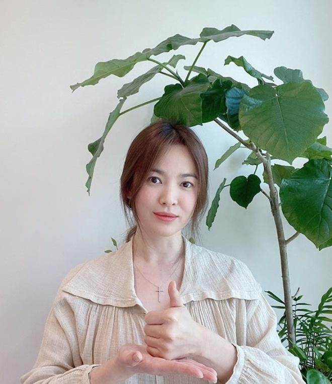 Tình bạn ít người biết của Song Hye Kyo và sao nữ Ký sinh trùng-3